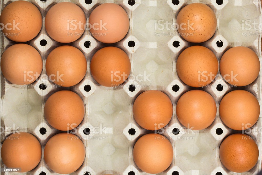 Eggs in the paper tray stock photo