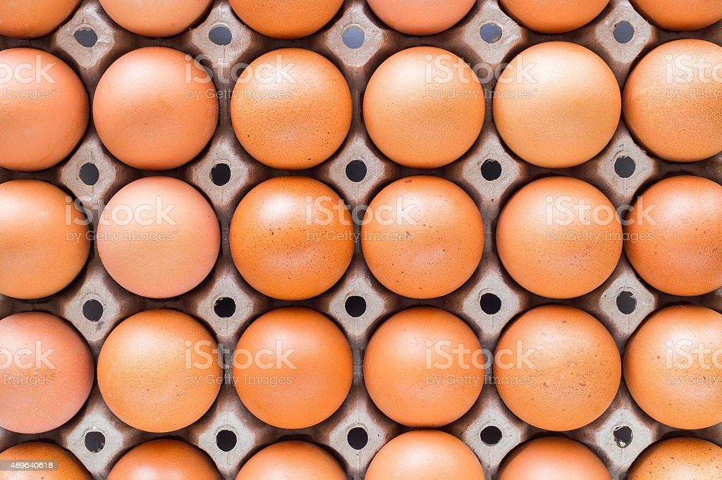Eggs in trays lined stock photo