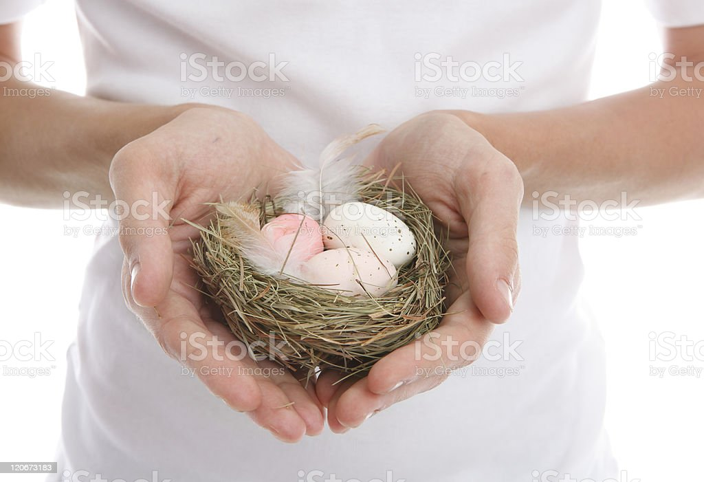 Eggs nest in heart cupped hands royalty-free stock photo