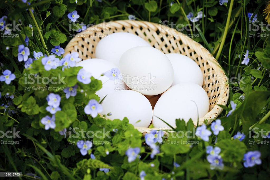 Eggs on grass royalty-free stock photo