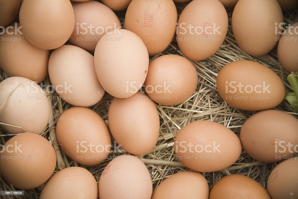 Eggs on straw royalty-free stock photo