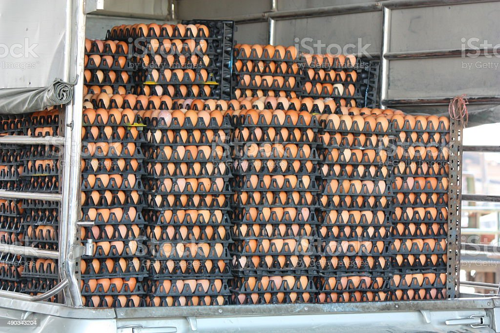 Eggs pack on the pickup stock photo