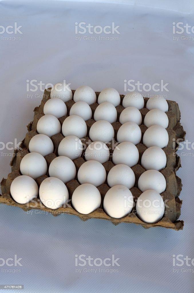 Яйцо Стоковые фото Стоковая фотография