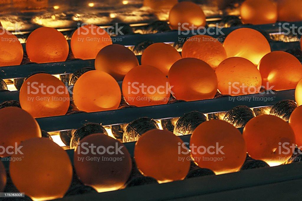 Eggs shipped and illuminated royalty-free stock photo