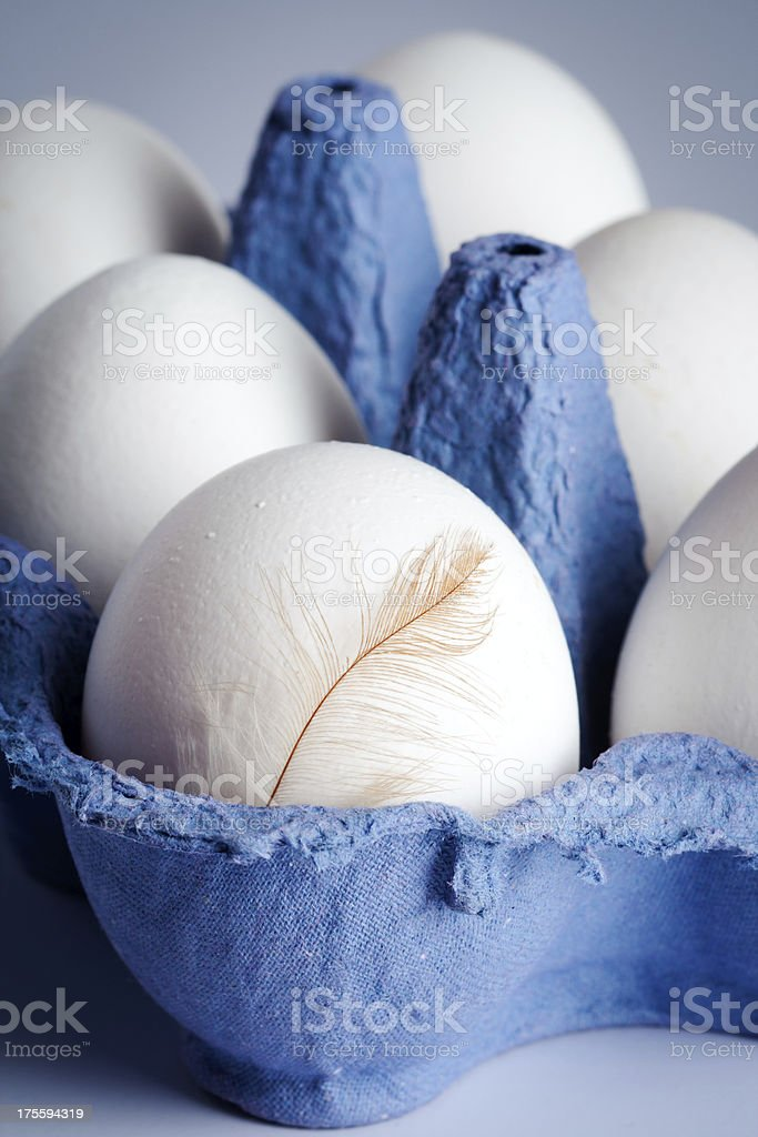 Eggs with a feather royalty-free stock photo