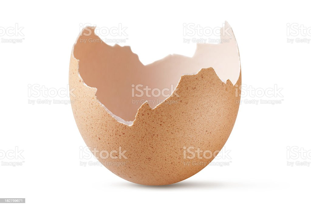Eggshell royalty-free stock photo