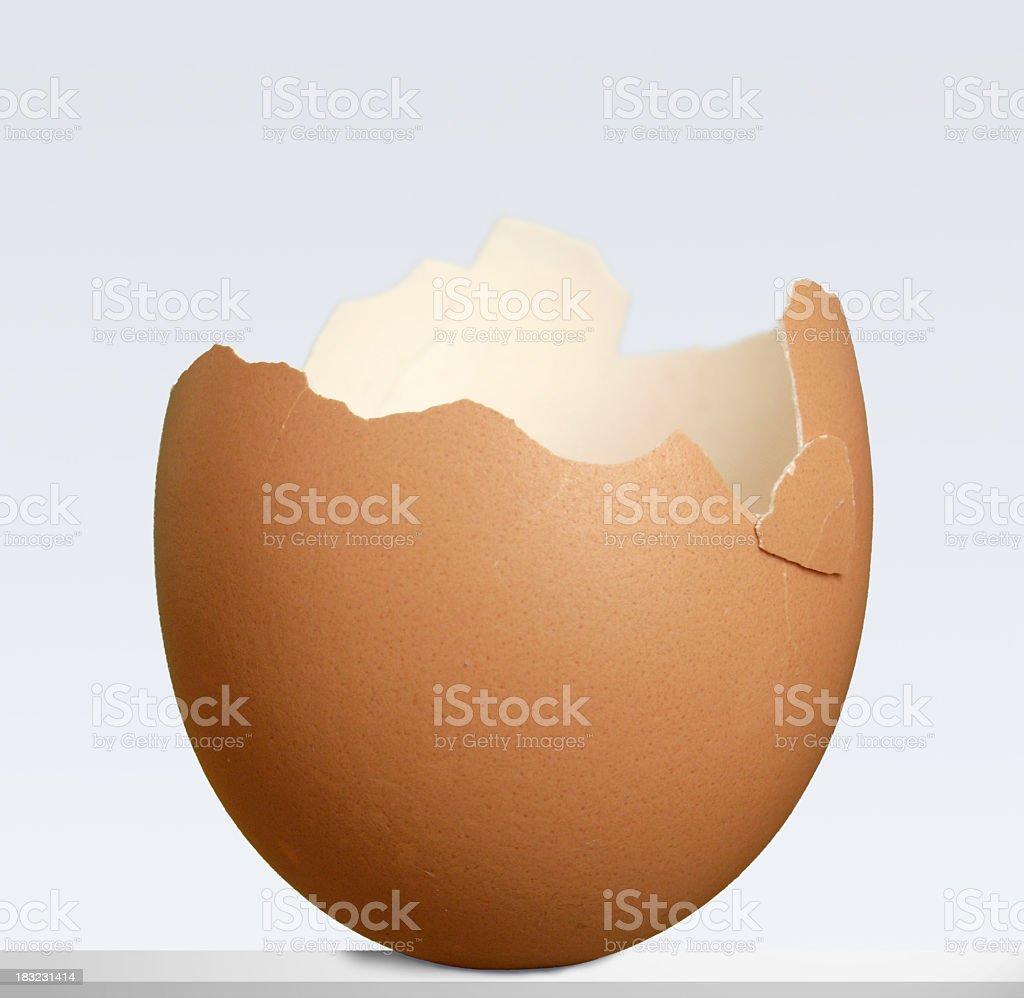 eggshell royalty-free stock photo
