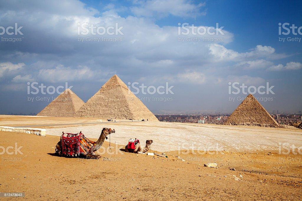 Egypt Giza Pyramids stock photo
