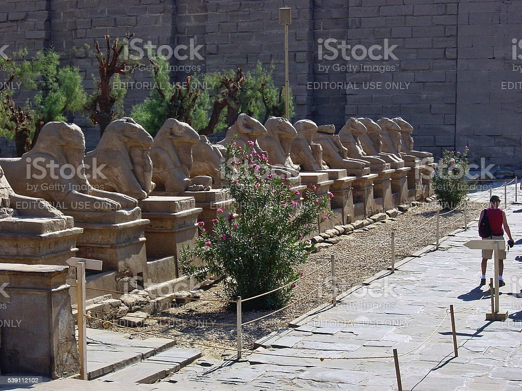 Egypt Luxor. Ram-headed sphinxes Avenue at Karnak Temple. stock photo