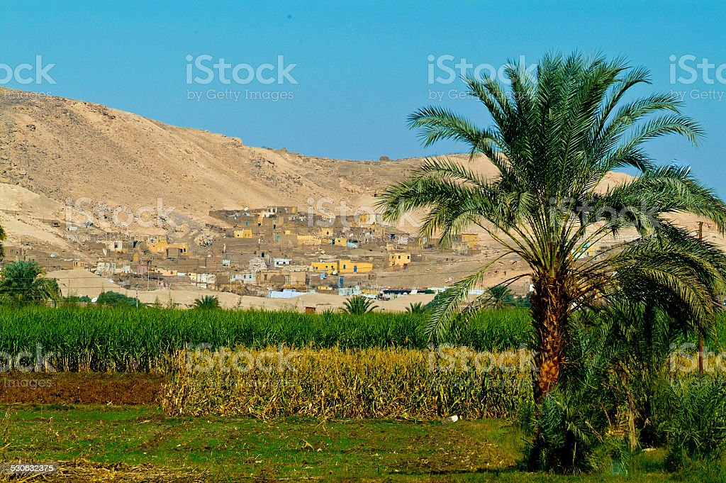 Egypt, Nile Valley, Luxor area, Thebes stock photo
