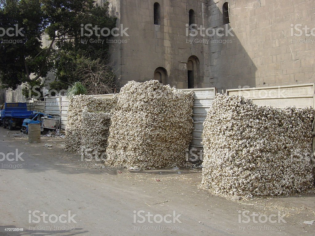 Egypt – Old Cairo 'At the Garlic market'... stock photo
