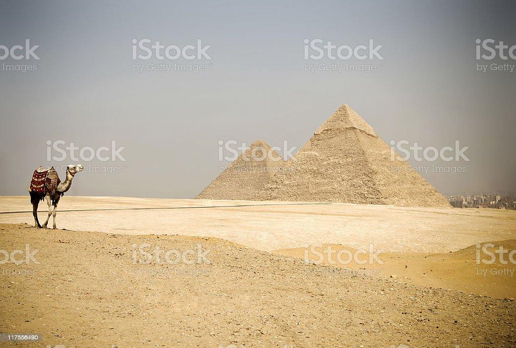 Egypt Pyramids royalty-free stock photo