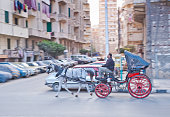 Egyptian cab driver
