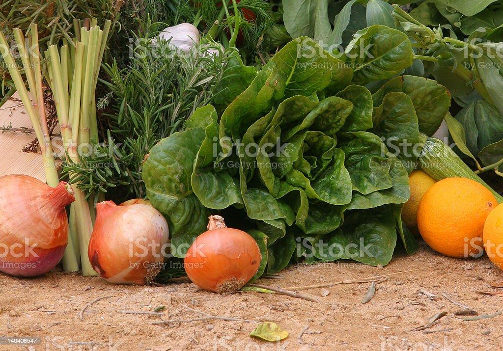 Egyptian organic vegetables royalty-free stock photo