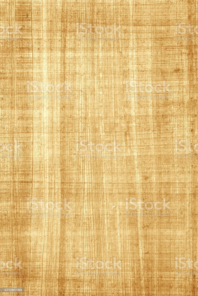 Egyptian Papyrus Paper royalty-free stock photo