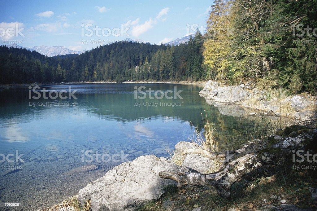 Eib lake royalty-free stock photo