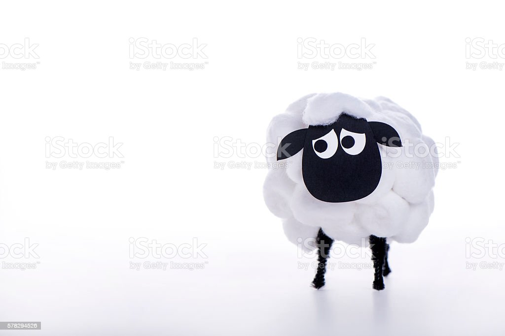 Eid Al Adha Sheep stock photo