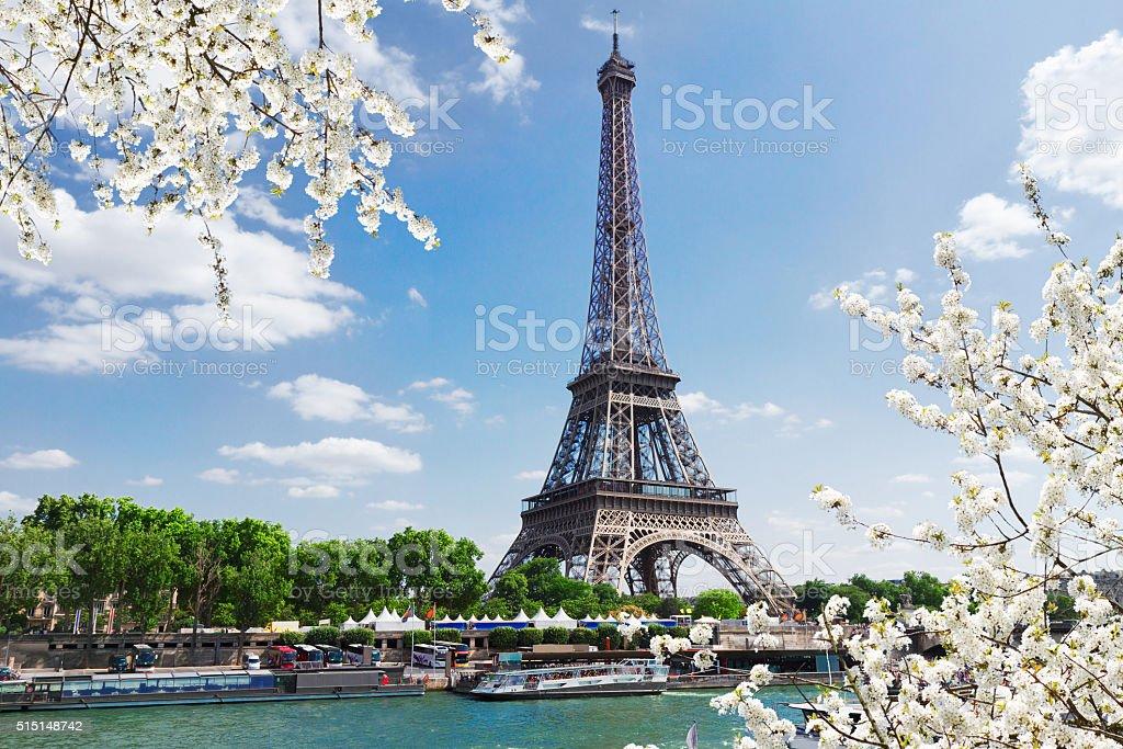 eiffel tour over Seine river stock photo
