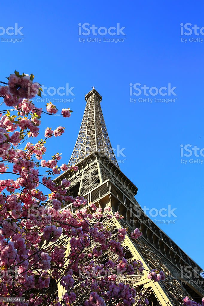 Eiffel Tower in spring time stock photo