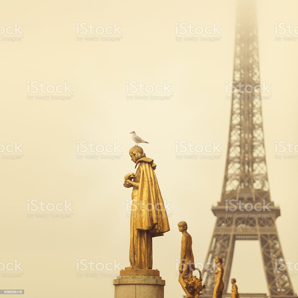Eiffel tower Paris from Trocadero stock photo