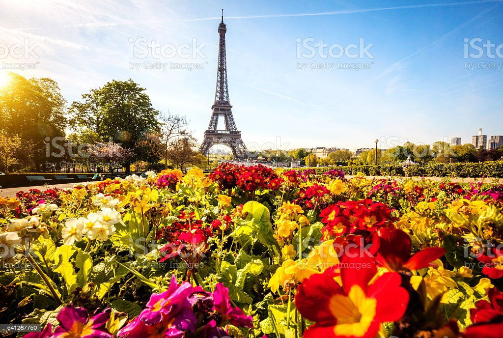 Eiffel tower with flowers in Paris, France stock photo