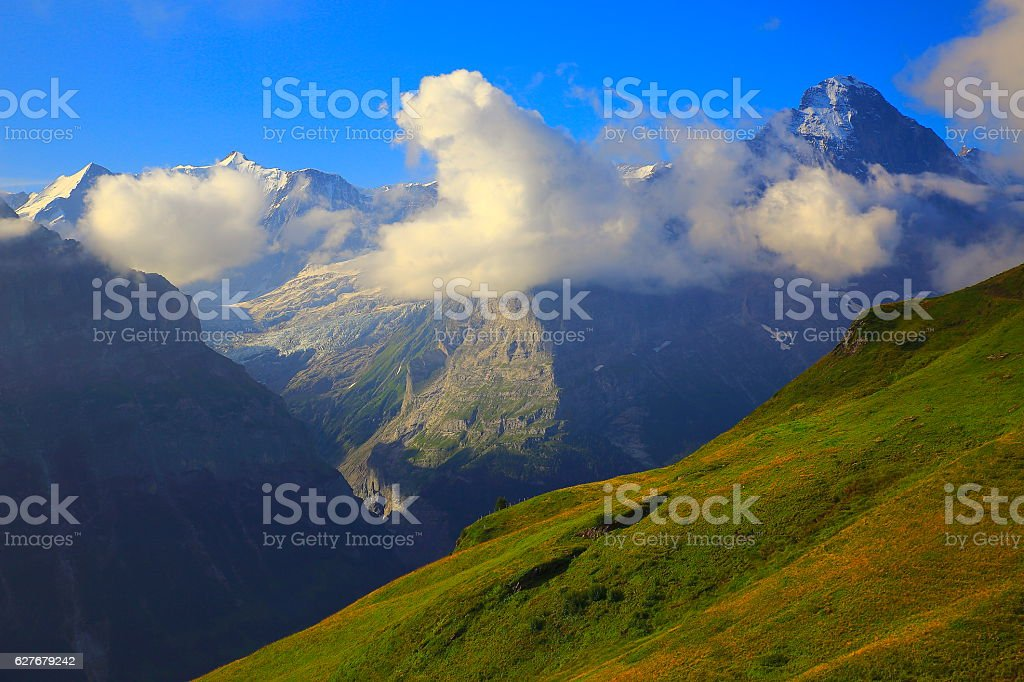 Eiger, Idyllic alpine meadows above Grindelwald valley landscape: Swiss Alps stock photo