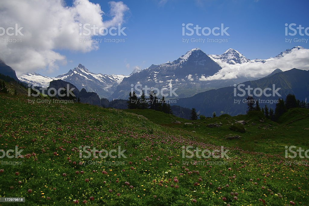 Eiger stock photo