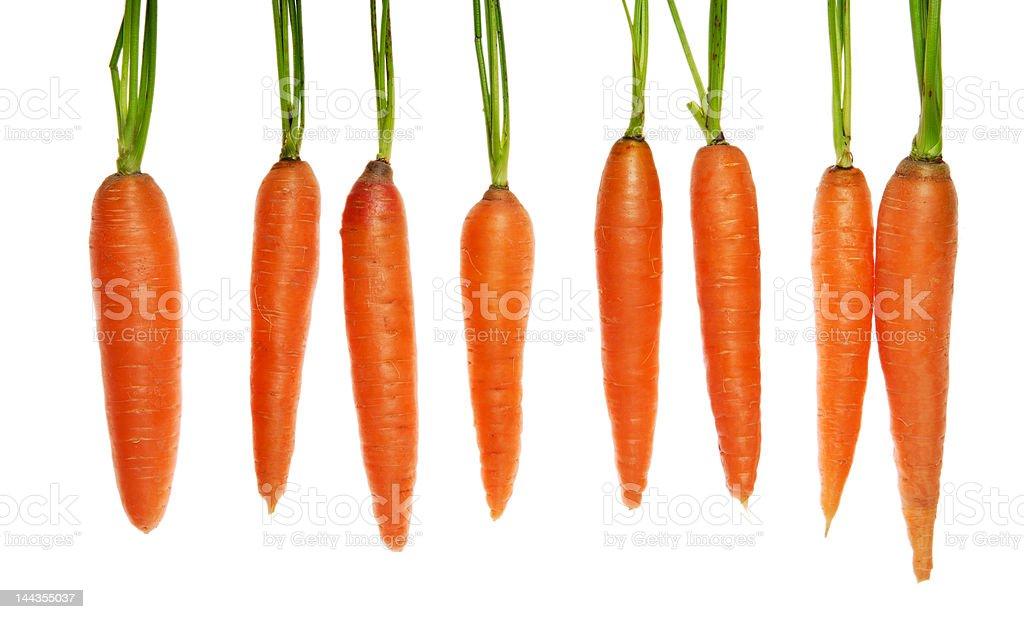 eight carrots royalty-free stock photo