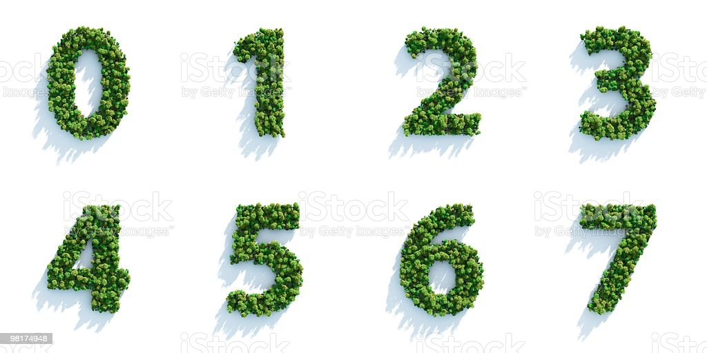 Eight digits made of trees on a white background royalty-free stock photo