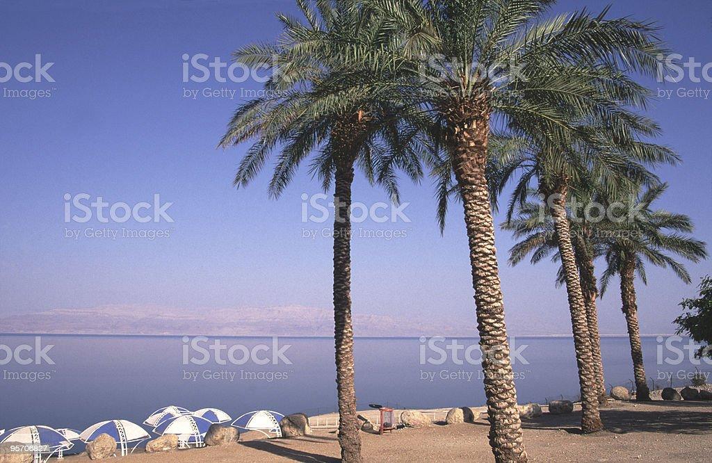 Ein gedi beach, dead sea royalty-free stock photo