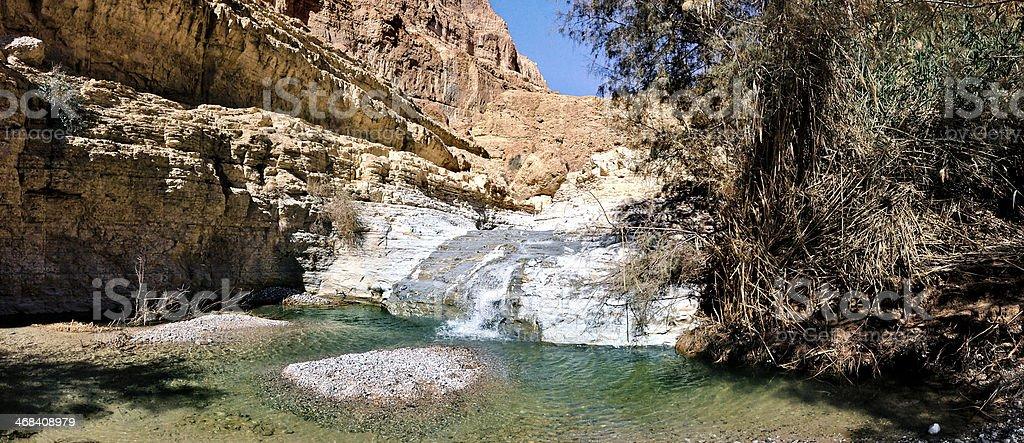 Ein Gedi - Dead Sea Desert, Israel stock photo