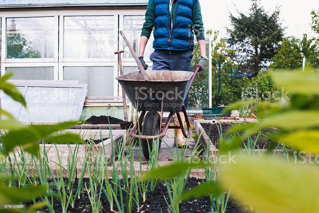 Ein junger Mann arbeitet im Garten stock photo