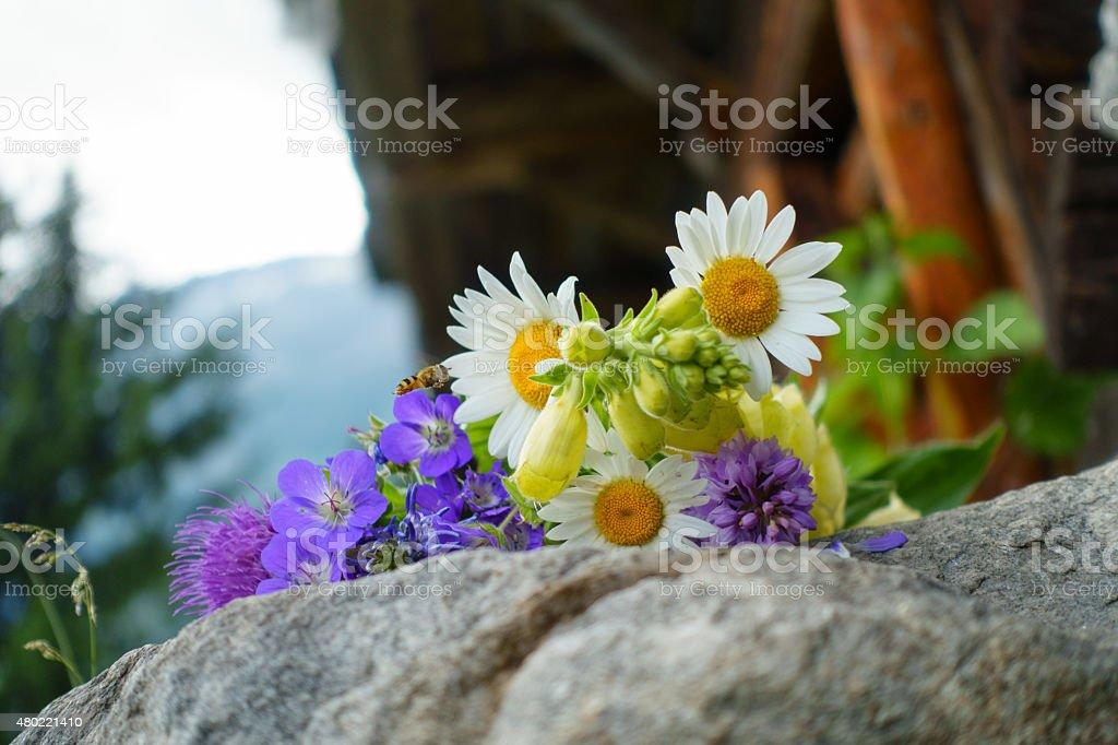 ein Strau? Wiesenblumen auf einem Stein mit Biene stock photo