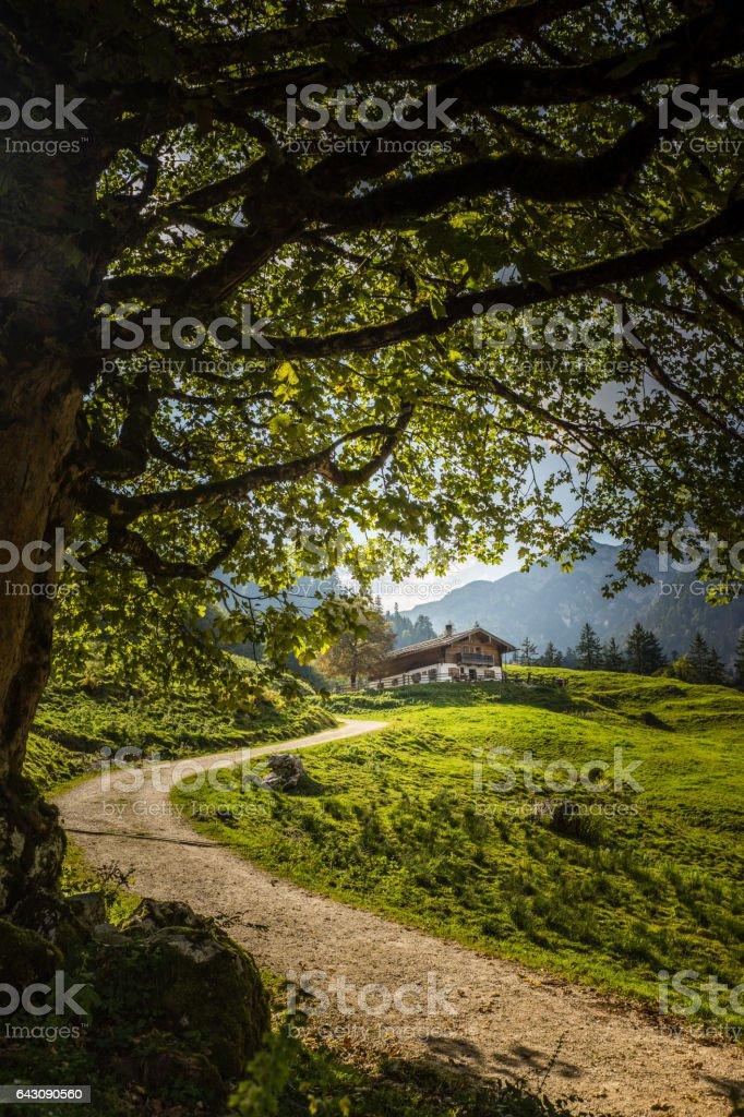 Eine Alm beim Hintersee in Berchtesgaden stock photo