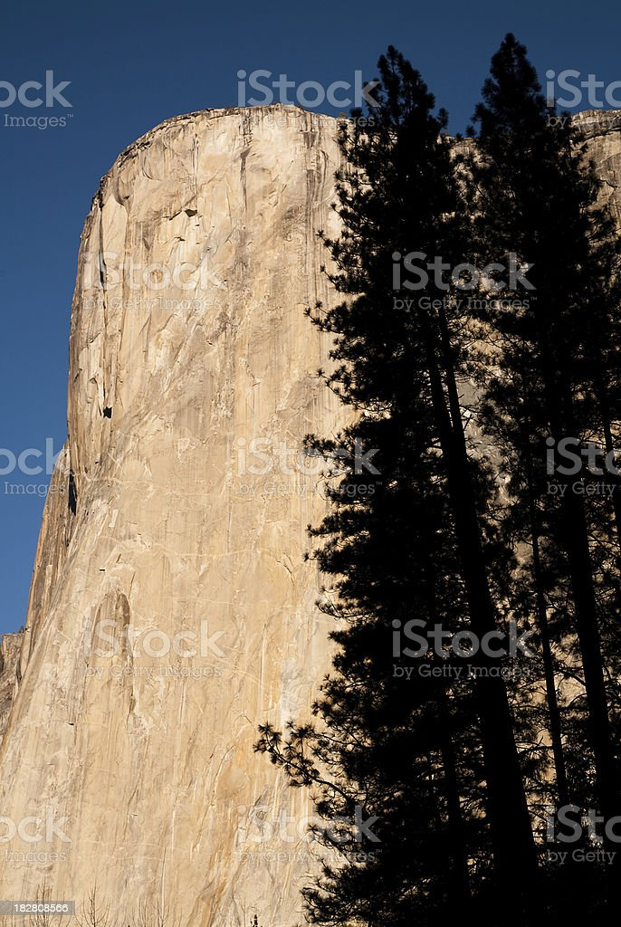 El Capitan with Silhouetted Trees royalty-free stock photo