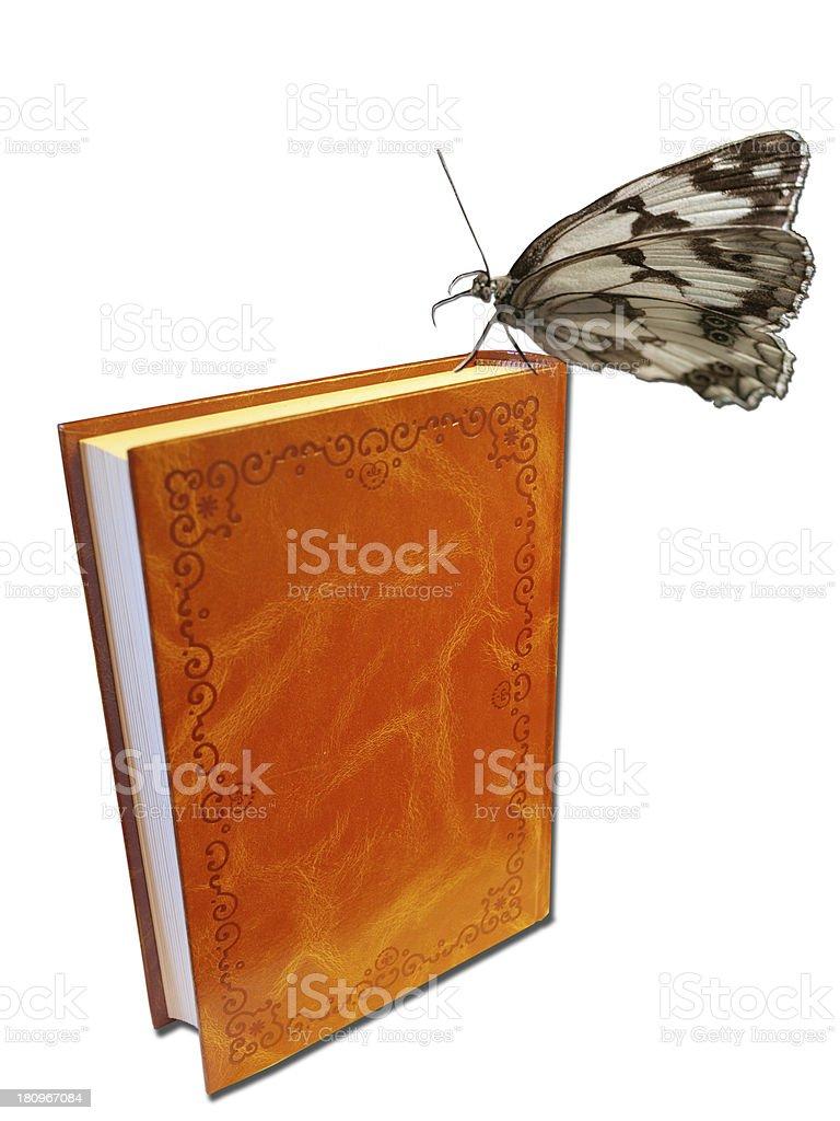 El libro de la mariposa royalty-free stock photo