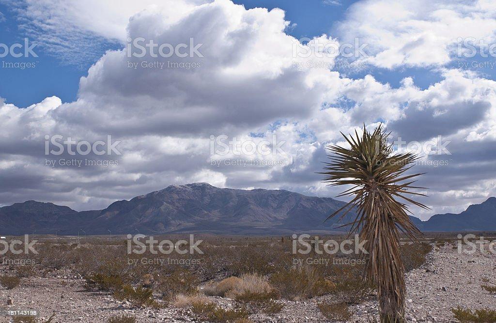 El Paso Texas Desert stock photo