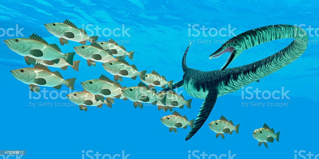 Elasmosaurus Ocean Hunt vector art illustration