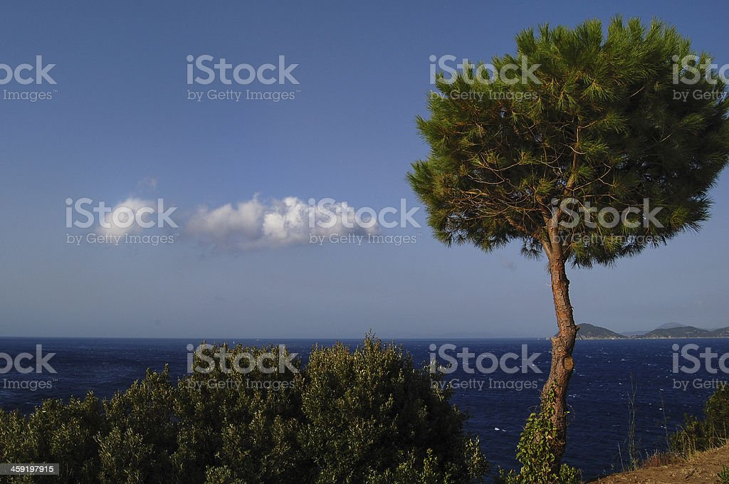 Elba Island royalty-free stock photo