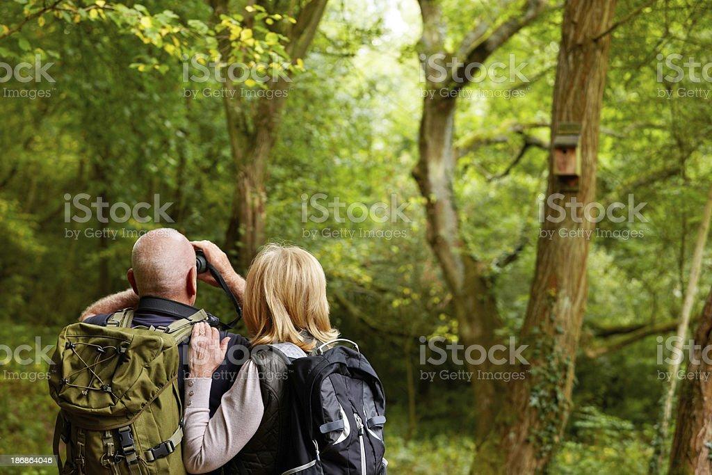 Elderly Couple Bird Watching stock photo