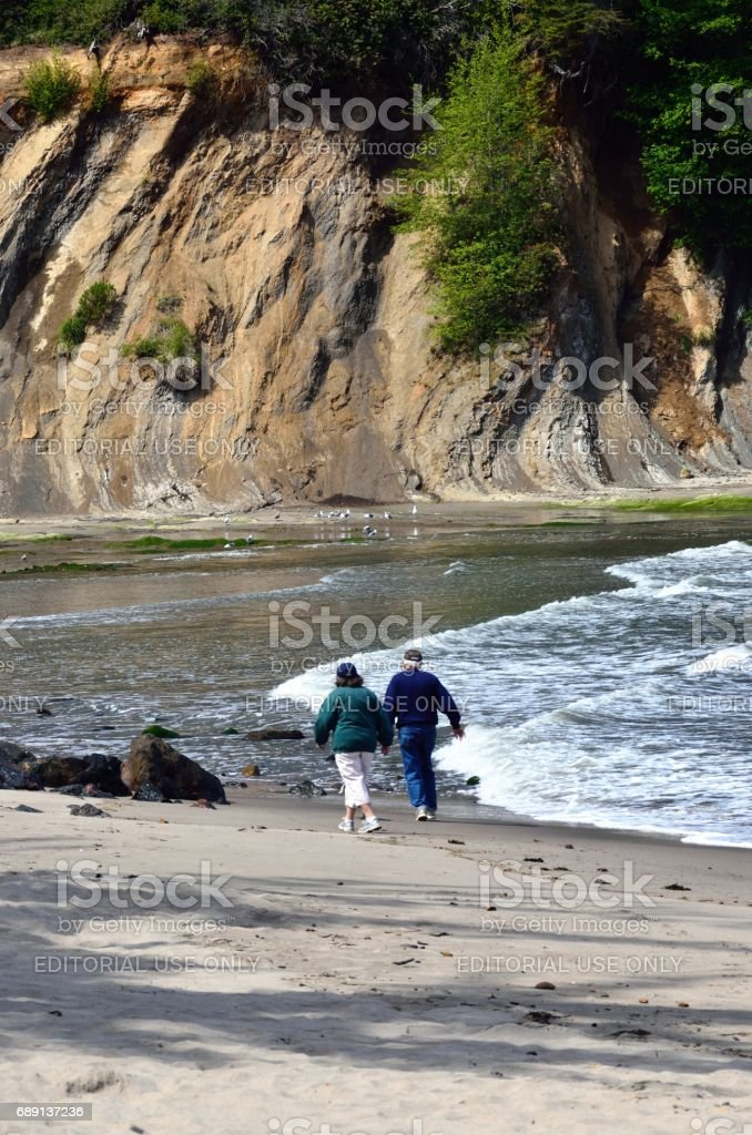 Elderly Couple Walking A Dog On The Beach In Sunset Bay State Park, Oregon stock photo
