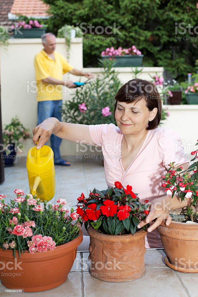 Elderly couple working  together in backyard. royalty-free stock photo