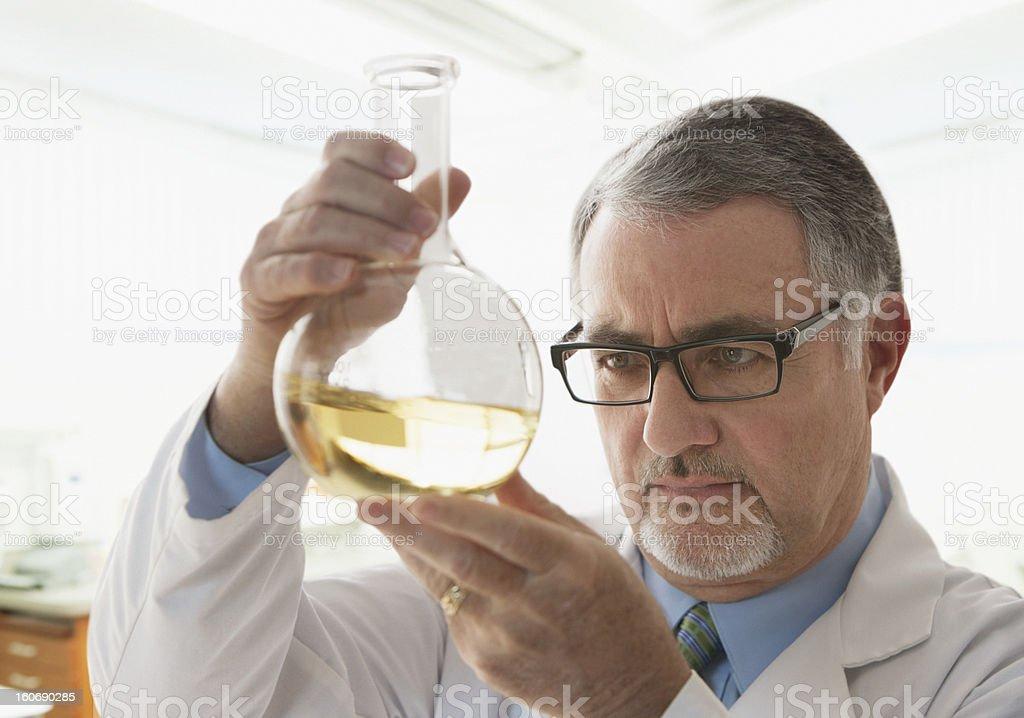 Elderly doctor analysing samples stock photo