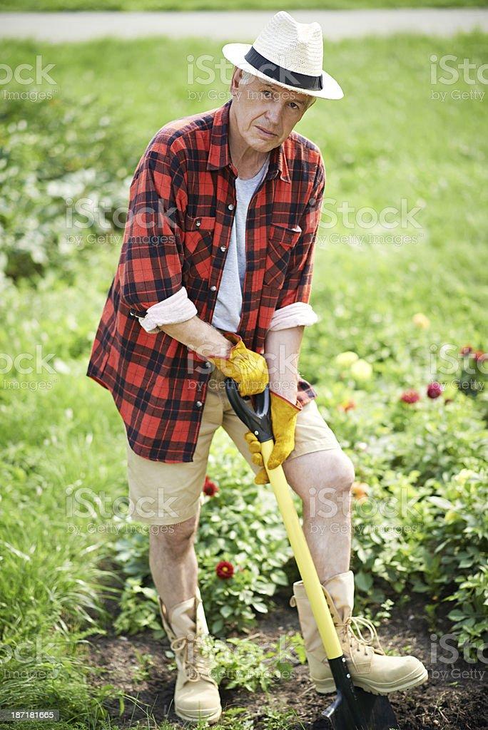 Elderly gardener royalty-free stock photo