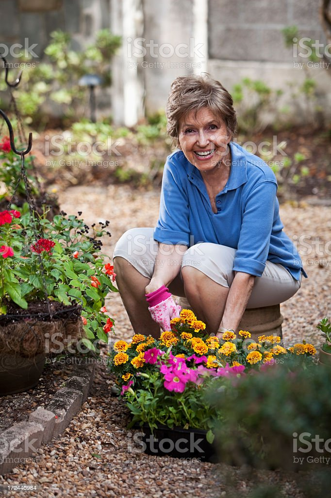 Elderly woman gardening stock photo