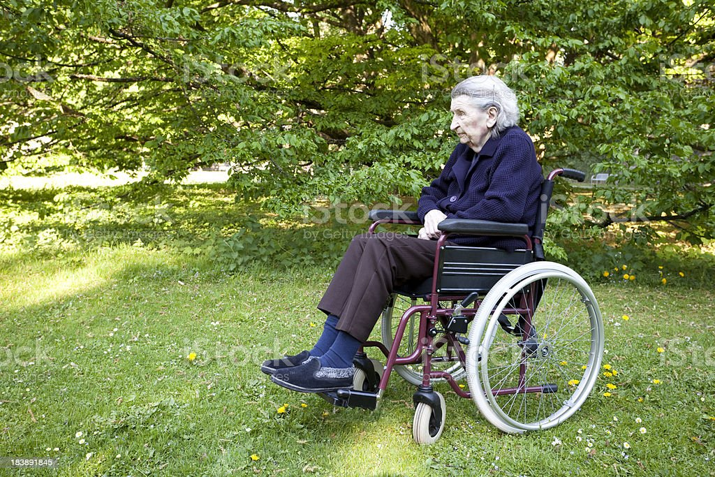 Elderly Woman on Wheelchair Relaxing in Front of Spring Tree stock photo