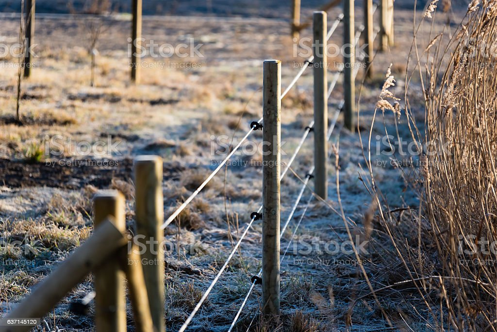 Electric fence in frost stock photo