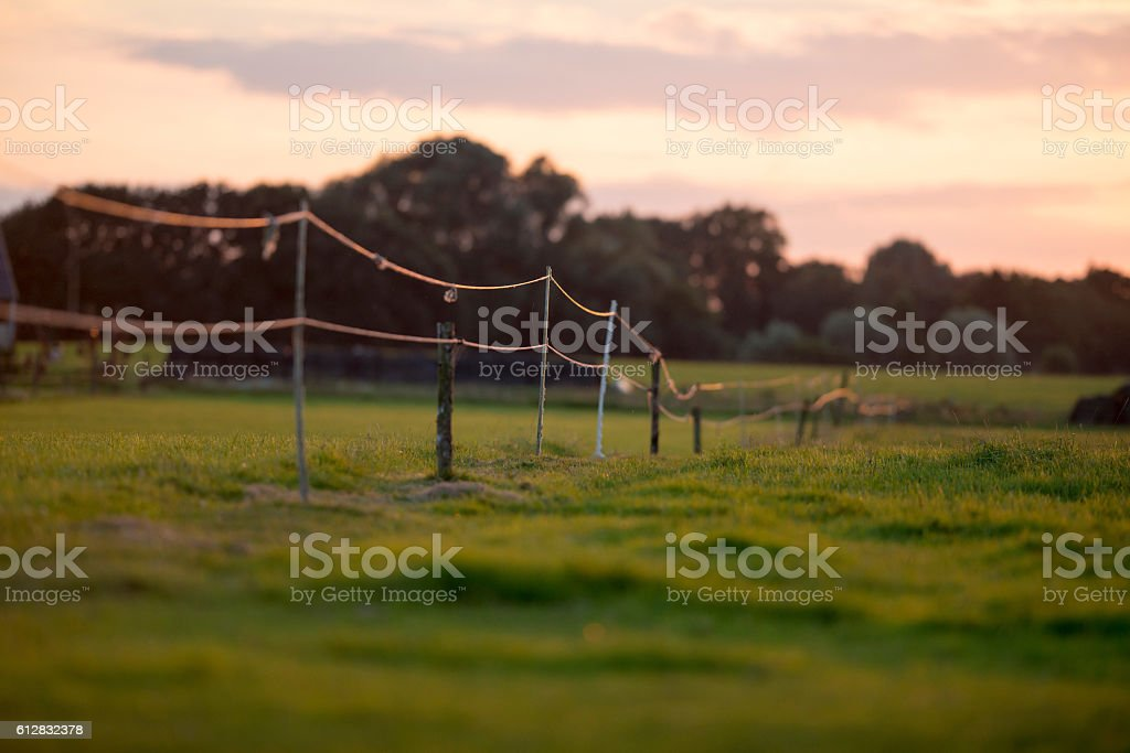 Electric fence on farm land at sunset. stock photo