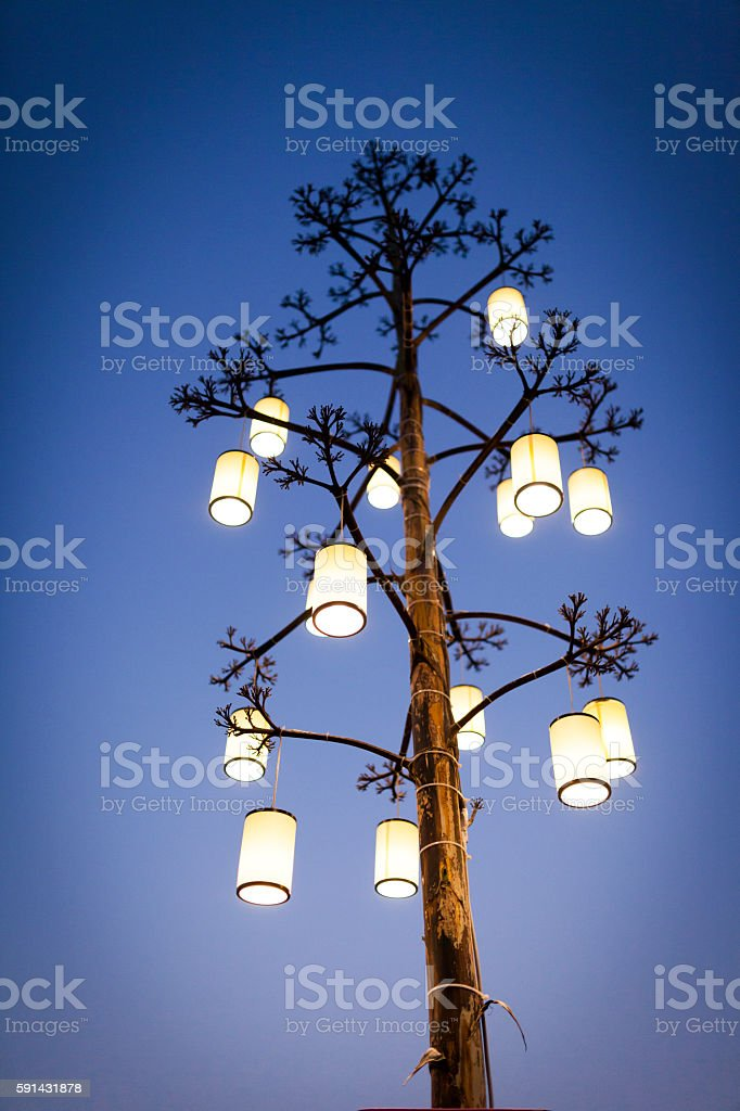 Electric Lights On The Tree stock photo