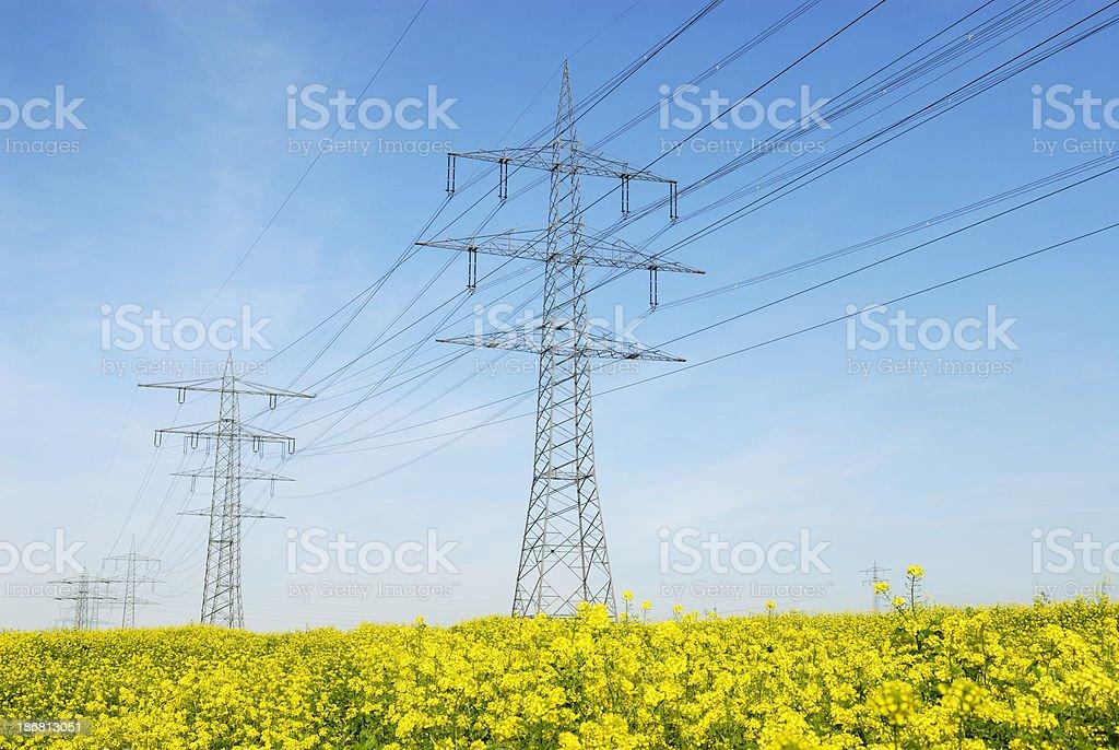 Electricity stock photo